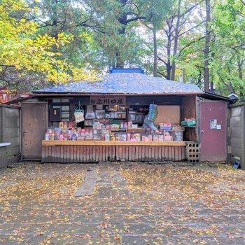 こちらは日本最古の駄菓子屋さん