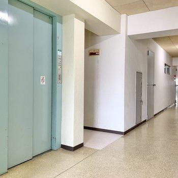 お部屋まではエレベーター。大きなお買い物をした時にありがたいんだな。