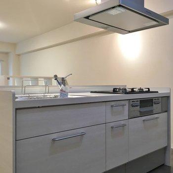 ファミリーサイズのキッチン。