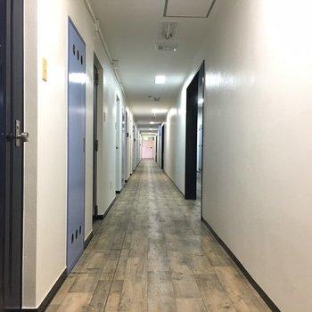 共用部の廊下はどこまでも続きそう。