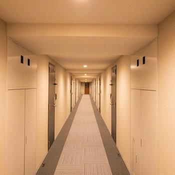 廊下がとても長いです