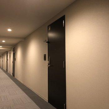 写真のドアが今回紹介したお部屋です。