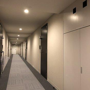共用廊下は明るくて落ち着く雰囲気です。