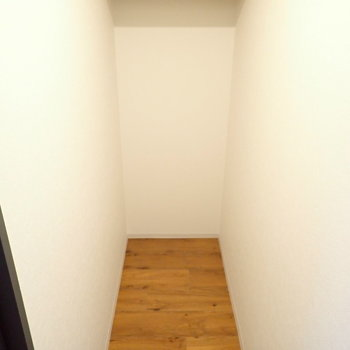 洋室の収納です。奥行きがあるので、けっこう入りそう