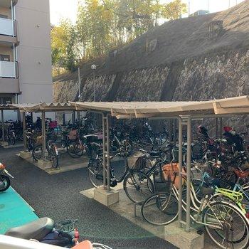 駐輪場のスペースはかなり広いです◎