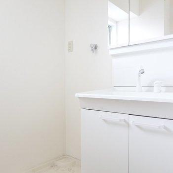 3面鏡で身だしなみが整えやすい。洗濯パンは左手に。