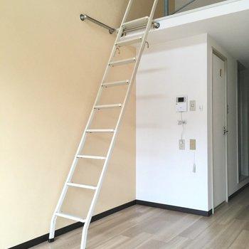 はしごを登ってロフトへ。はしごは横に立てかける事もできますよ。