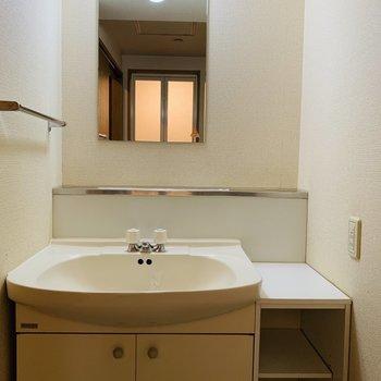 横に収納もある広い洗面台