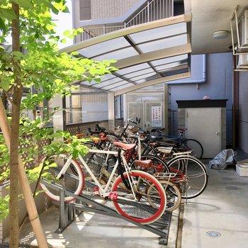 自転車置場は、キレイに整備されていました。