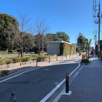 エントランス周辺。道路を挟んで向かいは北浦和公園です。