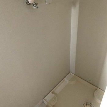トイレの向かいに洗濯機