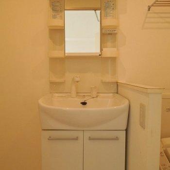 三面鏡にシャワーノズルの付いた洗面台※写真は3階の同間取り別部屋のものです