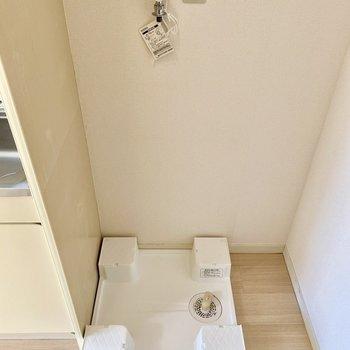 洗濯機置き場。横のスペースに何か置けそうです。