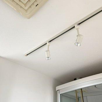 天井にはスポットライトも。