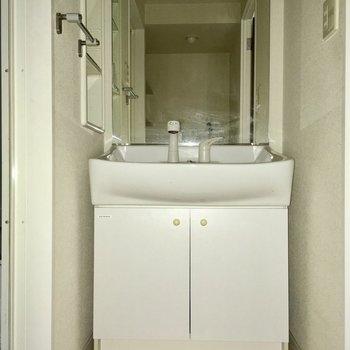 洗面台は鏡が大きくてファミリーサイズだ!(※写真は1階の同間取り別部屋、清掃前のものです)