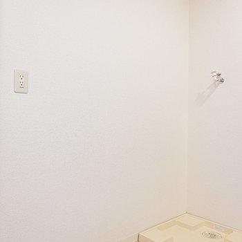 キッチン右手には冷蔵庫と置き場と洗濯パン。