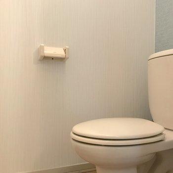 トイレには頭上に棚もありましたよ。