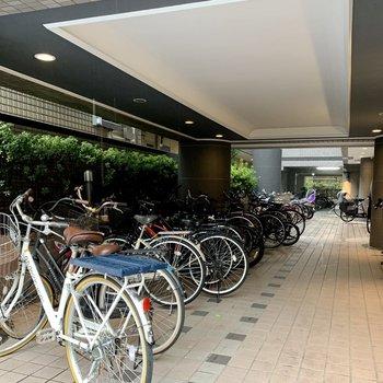 自転車とバイクはエントランス前の場所に