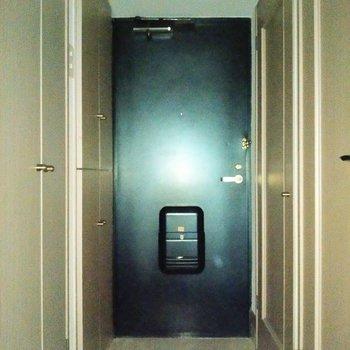 玄関は土間もしっかり◎廊下には扉がいっぱい!