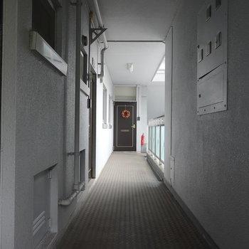 玄関前の共用部です。