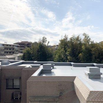バルコニーからの眺望です。空が広い!