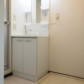 右側には洗濯機置き場、左側には使い勝手の良さそうな洗面台があります。