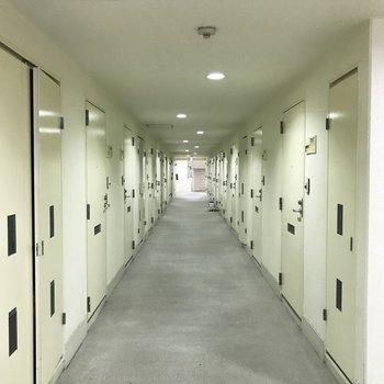 【共用部】白い廊下を突き当たりまで進むと、左にお部屋が!
