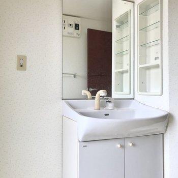 鏡たっぷりの洗面台。横の棚には統一感あるボトルを並べたい◯