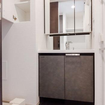 脱衣スペースはシックな色合い。バスタオルなどに便利な棚も。※写真は5階の反転間取り別部屋のものです