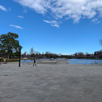 池やテニスコートなどもあり、広ーい公園です。