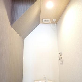 天井が小洒落てます。