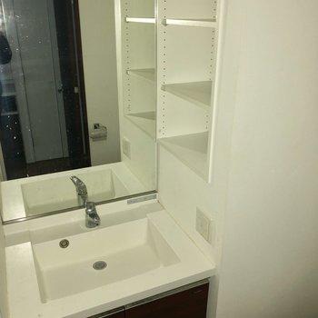 横の棚には歯ブラシホルダーや石鹸類が置けそうです。※写真は通電前のものです