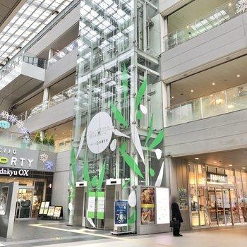 駅中にはたくさんのお店が入っています。お買い物はこちらで済ませるのがオススメ。