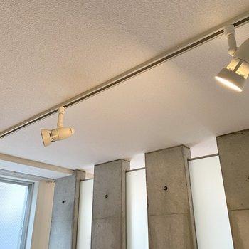 シーリングランプが上からベッドを照らしてくれるようです。