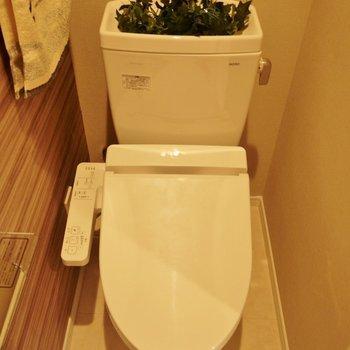 トイレはシンプル!※写真は別室です。