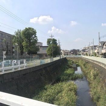 お部屋のすぐ横を小川が流れていました。