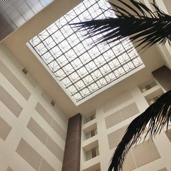 【31階】天井は吹き抜け。