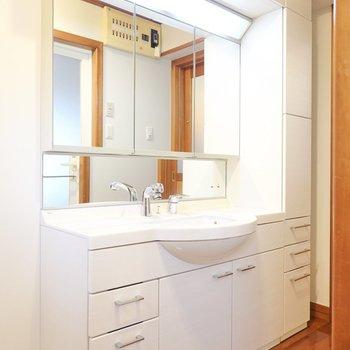 鏡の大きさもさることながら、それを囲む収納棚の多さに目を見張ってしまいます。