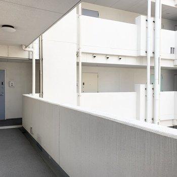 ドアのカラーがそれぞれ違って素敵な雰囲気の共用廊下。