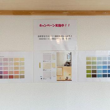 ちなみに入居者様を対象に、壁紙をお好きな色に張り替えられるキャンペーンをしているみたいです。