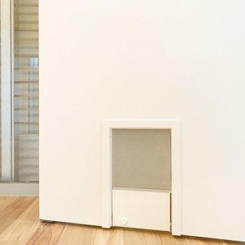 サニタリーの扉にペット用の扉。かわいい。※写真は1階の同間取り別部屋のものです