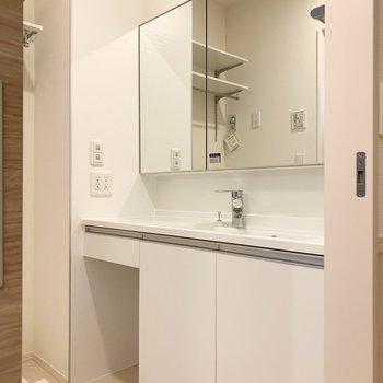 鏡が大きい!鏡面も収納になっています。※写真は1階の同間取り別部屋のものです