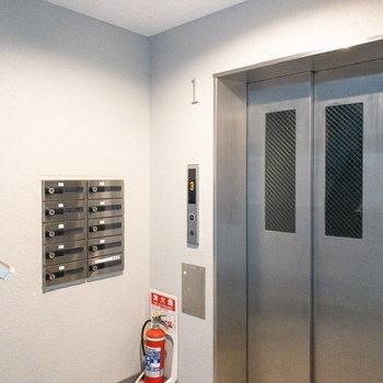 裏側にはメールボックスとエレベーターが。