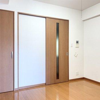 【洋室4.8帖】左側の扉は少しスリムなクローゼットですが…
