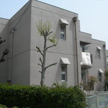 新稲ロイヤルハウス