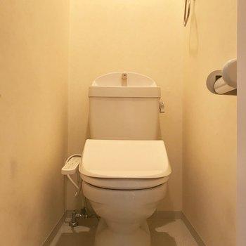 トイレは玄関近くにありました。天井部に収納スペースが。