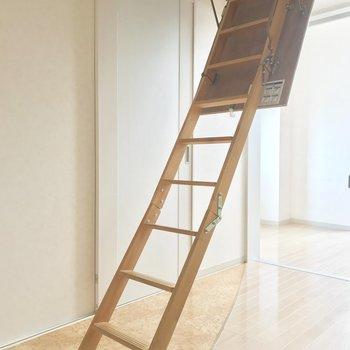 キッチン前にロフトへのはしごが収納されています!では上へ…。