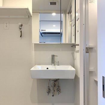 洗面台下に猫のトイレが置けます