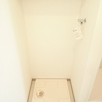 うしろに洗濯機があります。上には洗剤を置けますね。