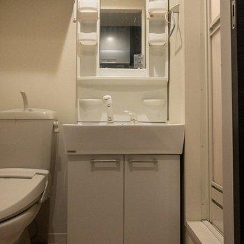 洗面台はコンセントが付いていて使い勝手が良さそう。